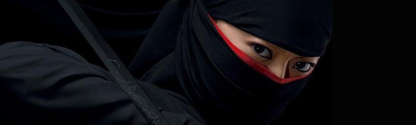 Spoiler – filmy o ninjach