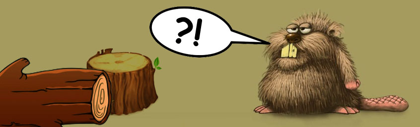 Przerwa Techniczna – Boże, chroń bory, bobry i Bug!