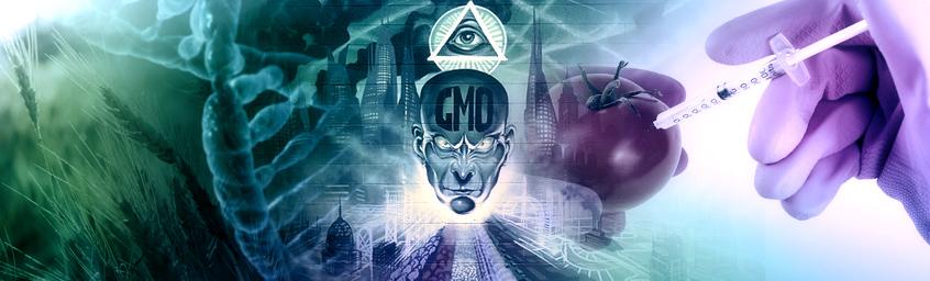 Przerwa Techniczna – Hej, ho, GMO!